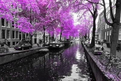 Holenderski pejzaż z rzeką