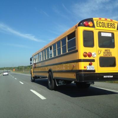 BG1478 Żółty Schoolbus