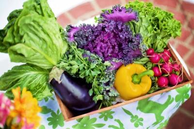 BG1548 Smaczne warzywka do kuchni