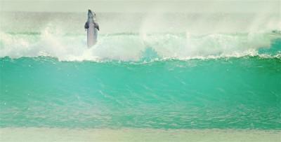Sympatyczny delfin w oceanie