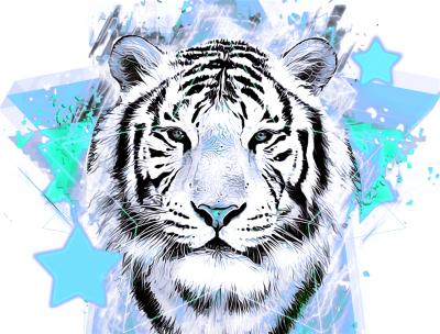 Tygrys z turkusowymi gwiazdkami