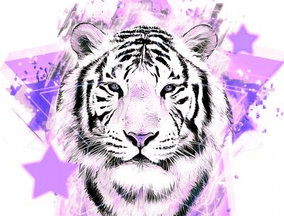 Tygrys we fiolecie