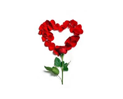 Różane serce Dowód miłości