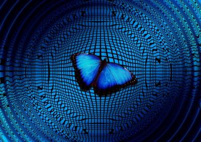 Motyl na basenie