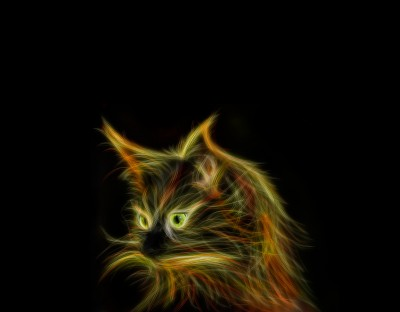 Nieziemski kot