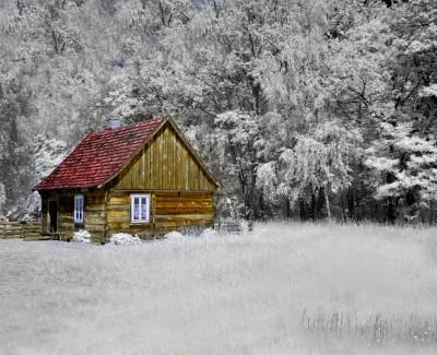 Całoroczny dom z bali