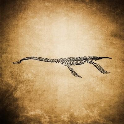 Prehistoryczny gigant