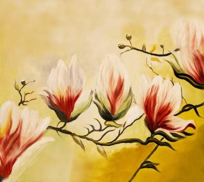 Magnolia Drzewo piękna