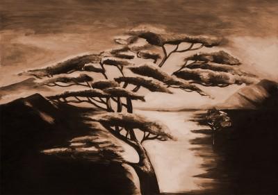 Afrykańskie drzewko