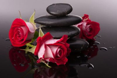 Róże koło kamieni