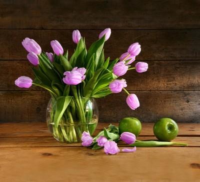 Fioletowo-różowe tulipany