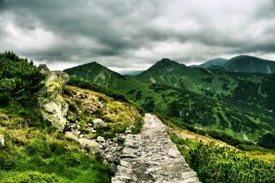 Dróżka w Tatrach