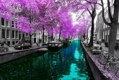 Rzeka w Amsterdamie