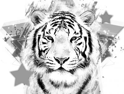 Biało-czarny tygrys