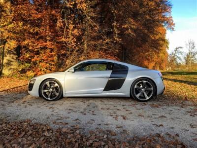 Audi R8 w jesiennym plenerze