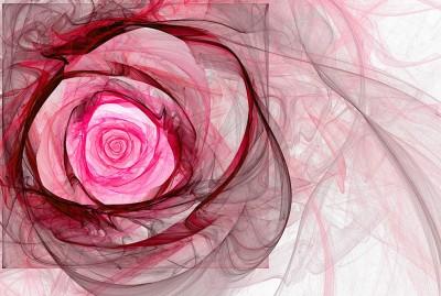Różowa róża fraktalna