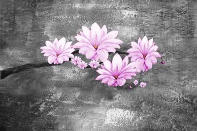 Piękne magnolie