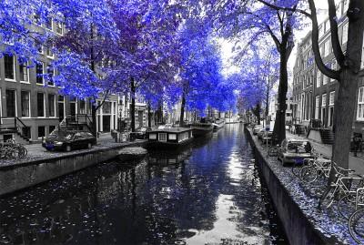 Chabrowy Amsterdam