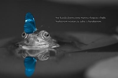 Żaba z charakterem