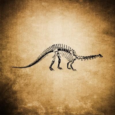 Dinozaur na ścianie
