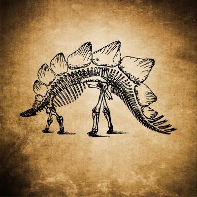 Szkielet dino
