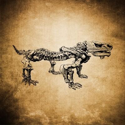 Dino szkielet
