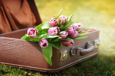 Miłosna walizka