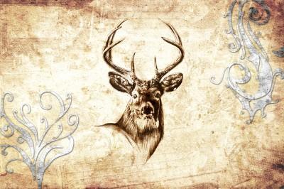 Łeb jelenia