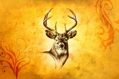 Głowa jelenia z rogami