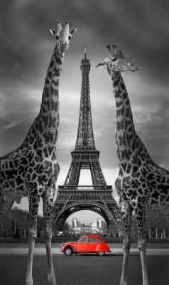 Wielka wieża