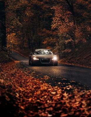 Jesienna przejażdżka Audi