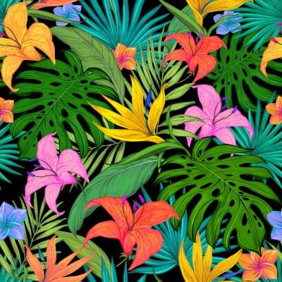 Monstera Kolorowe tropiki