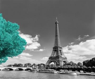 Turkusowe drzewo przy Wieży Eifla