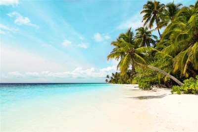 Kocham tropiki