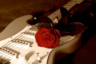 Wiosło i róża