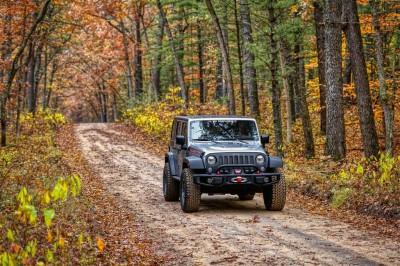 Jeep w lesie